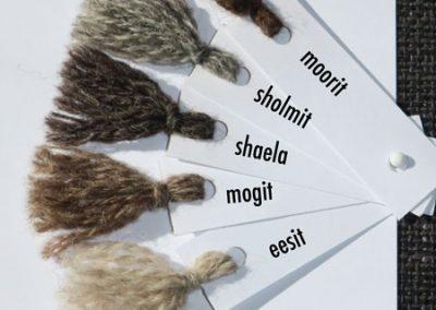 Moorit & Sholmit